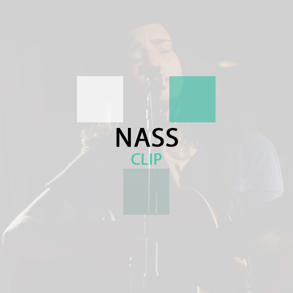Thumbnail_Over_Portfolio_NASS